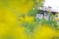 8月24日今日の写真 - ainosatoブログ02