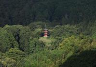 明日香岡寺三重塔遠望 - 魅せられて大和路