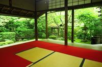 妙心寺桂春院(その1)清浄の庭と侘の庭 - レトロな建物を訪ねて