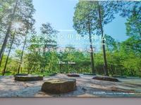 紫香楽宮 - 月下逍遥