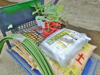 兼業農家は秋野菜の定植をしました - 浦佐地域づくり協議会のブログ