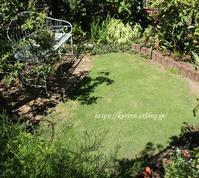 シェードの小径♪今日のガーデニング - miyorinの秘密のお庭