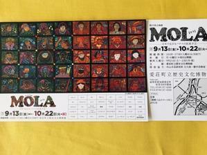 MOLA   日本で広がるパナマで民族手芸 -