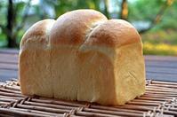 ホップス - 森の中でパンを楽しむ