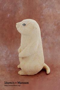 プレーリードッグ * Prairie dog 01 - … いづみのつぶやき