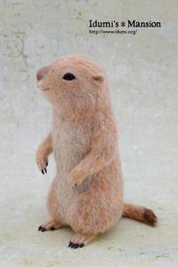 プレーリードッグ * Prairie dog 04 - … いづみのつぶやき