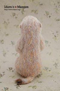 プレーリードッグ * Prairie dog 05 - … いづみのつぶやき