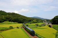 黄金田と上り瑞風2019年8月26日 - 鉄道日和