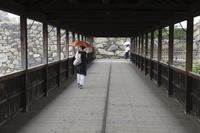 電車旅・仏生山へ⑤ラスト - 猪こっと猛進