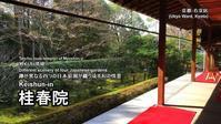 妙心寺桂春院(その2)思惟の庭と真如の庭 - レトロな建物を訪ねて