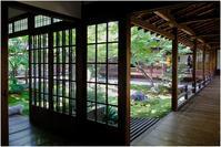 建仁寺の庭 - HIGEMASA's Moody Photo