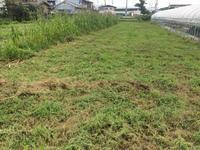 草刈り - かけっこ日記