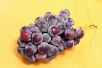 葡萄のピオーネを栽培中です - 園芸日和