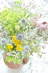 9月レッスン予定日です - お花に囲まれて