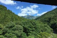谷川温泉檜の宿水上山荘宿泊記① - ずっとそばに