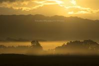 霧の向こうから・・・ - ekkoの --- four seasons --- 北海道