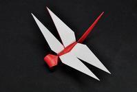 創作折り紙「赤とんぼ」 - 星檜葉(hosihiba・ホシヒバ・StarConifer)