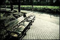 不忍池 -10 - Camellia-shige Gallery 2