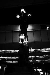 日本橋Nightwatch - HTY photography club