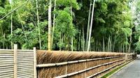 竹の径 - Qu'est-ce que c'est