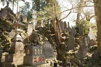 成田の旅 - 僕の足跡