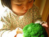 家族の大切な時を過ごす「家」 - 成長する家 子育て物語