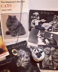 ●イギリスのCats & Kittens♪ - 英国古物店 PISKEY VINTAGE/ピスキーヴィンテージのあれこれ