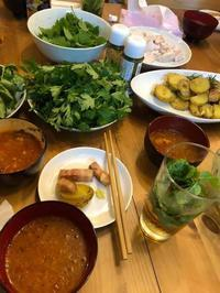Hostel KIKOさんでCooking party with zao herbs開催 - 農場長のぼやき日記