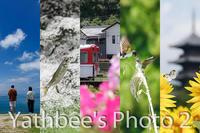 ~ 2019 夏短冊 ~2019.8.31 - Yathbee's Photo 2