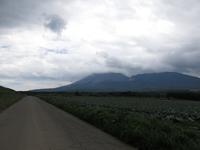 新しい獣との遭遇・・・ - 月の光 高原の風 かなのブログ