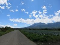今迄で一番半端に帰る別荘滞在でした・・・ - 月の光 高原の風 かなのブログ