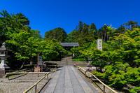 新緑の頃(粟生光明寺) - 花景色-K.W.C. PhotoBlog