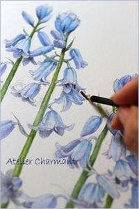 枯れても大切に残す - Atelier Charmant のボタニカル・水彩画ライフ
