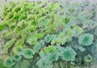 蓮池 - ryuuの手習い