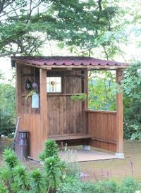 完成した小屋の植栽を考える♪ - ペコリの庭 *