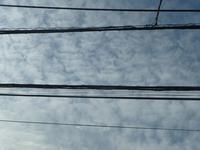 ようやく9月しんどい9月 - hibariの巣