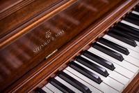 """平春来・2019/08/31(Sat)セトリ (at Piano Studio) - レミオロメン・藤巻亮太に """"春よ来い"""""""