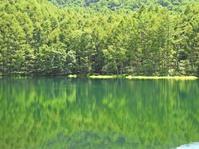 緑響く - *la nature*