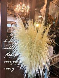 『IVORY 花教室 9 September 開催です〜♬』 -  Flower and cafe 花空間 ivory (アイボリー)