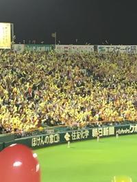 阪神対中日戦へ!(大杉) - 柚の森の仲間たち