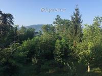そして山へ... - ボローニャとシチリアのあいだで2