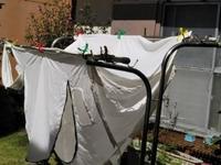 シックシェルターのテント洗濯中♪ - 化学物質過敏症・風のたより2