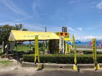 【熊本旅行】天草でイルカウォッチングをした話 - もふもふ あんど もぐもぐ