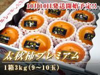 令和元年度の『太秋柿プレミアム』は10月10日から出荷予定!!ただし販売スタートは少々お待ちください - FLCパートナーズストア