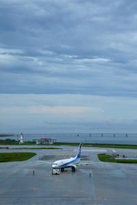 雨の後 - 南の島の飛行機日記