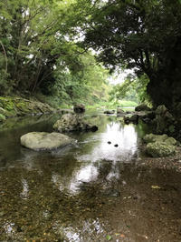 夏の終わりにまた川へ。@ときがわ町 - ヒビノコト。