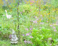 すでに秋の庭 - 軽井沢プリフラdiary