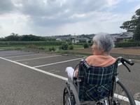 ダイアリー 年老いた母と過ごす時間 - 散歩ガイド