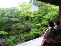 京都女子一人旅・永観堂 - 月の旅人~美月ココの徒然日記~