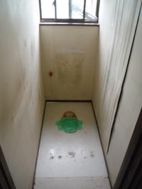 トイレ内装リフォーム~壁工事。 - 市原市リフォーム店の社長日記・・・日日是好日